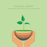 Save the eco earth. Save the earth.Hand holding sapling with Eco concept design.Vector illustration Stock Images