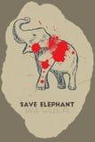 Save elephant. Save wildlife. Royalty Free Stock Photo