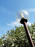 Save energy lamp Stock Images