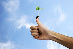 Save Environment. A hand holding a globe, saving environment recycle Royalty Free Stock Image