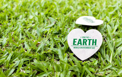 Save environment day. Concept. paper heart on green grass with soft-focus and over light in the background Stock Photography