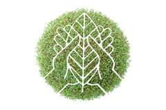 Save the forest. Symbol of hands with tree leaf superimposed on green plant - recycled paper concept Royalty Free Stock Photos