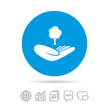 Save forest sign. Hand holds tree symbol. Royalty Free Stock Photography