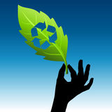 Save green energy  Royalty Free Stock Photography