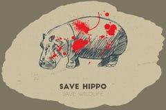 Save hippo. Save wildlife. Stock Photos