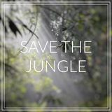 Save the Jungle. Sunlight rays pour through leaves in a rainfore Stock Images
