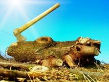Save lasu i drzewa Zdjęcia Royalty Free