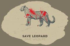 Save leopard. Save wildlife. Stock Photos