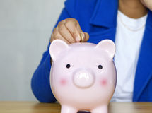 Save money with piggy bank Royalty Free Stock Photo