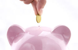 Save money with piggy bank Stock Images