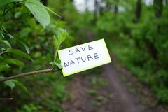 Save nature. Save the nature of the appeal on a tree branch Stock Images