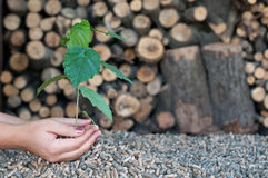 Save the Nature-alternative energy Stock Photo