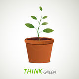Save Nature concept with plant in pot. Stock Photography