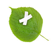 Save the nature. Ecology nature or environmental c. Oncept with green leaf and band aid on white Stock Photo