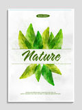 Save Nature Flyer or Pamphlet. Stock Photos