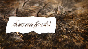 Save our forests message on tree trunk Royalty Free Stock Photos