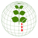 Save the planet!. Earth globe with bleeding leaves Stock Photography