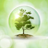 Save the planet. Abstract natural backgrounds Stock Photo