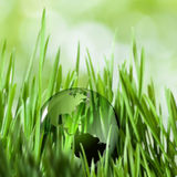 Save the planet. Abstract natural backgrounds Royalty Free Stock Photography