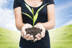 Save The Planet Concept. Woman With Growing Plant In Hand Concept For The Planet Royalty Free Stock Photography