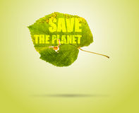 Save The Planet. Conceptual Photo of Leaf Royalty Free Stock Photo