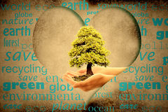 Save the planet. Earth,tree in hands in a heart Stock Image