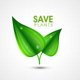 Save plant concept with green leaves. Royalty Free Stock Images