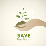 Save the Plants concept with human hand holding plant. Stock Image