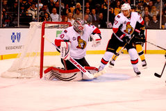 Save Robin Lehner Ottawa Senators Stock Photos