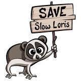 Save Slow Loris cartoon animal. Protesting holding a placard Royalty Free Stock Images