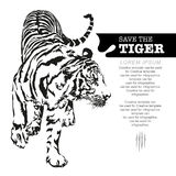 Save the tiger, tiger walking. Save the tiger, tiger walking, black and white colour, illustration design Royalty Free Stock Photography