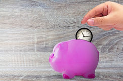 Save Time Concept. Business management and planning, hand holding alarm clock and piggy bank Stock Photos
