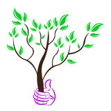 Save tree Royalty Free Stock Photography