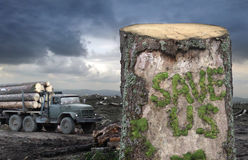 Save the trees!. Green moss is formed the Save Us inscription on the surface of cut tree Stock Photos