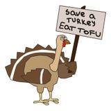 Save turkey Stock Photography