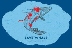 Save whale. Save wildlife. Royalty Free Stock Images