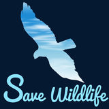 Save wildlife theme with bird flying Royalty Free Stock Image