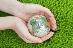 Save the world. Earth globe in a palm hands  on green moss  background Stock Images