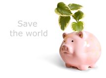 Save the World. Isolated pink pig concept save the world Stock Photos