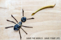 Save the world concept Royalty Free Stock Image