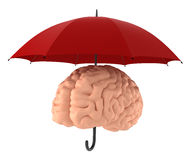 Save your brain. Brain - Sanity - Mind Protection. Include Clipping Path Stock Photos