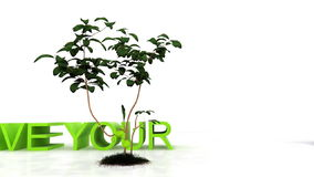 Save your planet , environmental conservation concept, stock footage Stock Image