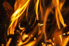 SaveDownload PreviewFire flames on a black background. Blaze fi Royalty Free Stock Image