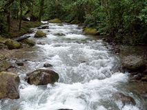 Savegre River. This one of the most fresh water river stock photos