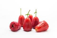 Saveurs de fruit de pomme de la Thaïlande de pomme de Rose de lustre rouge doux Photos libres de droits
