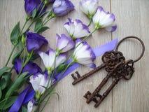 Saveurs pourpres avec des clés image libre de droits