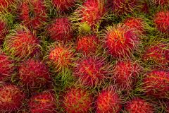 Saveurs thaïlandaises de fruit de ramboutan photo stock
