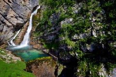 Savica瀑布 免版税图库摄影