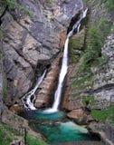 Savica siklawa blisko jeziornego Bohinj, Slovenia zdjęcie royalty free