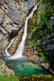 Savica waterfall. Bohinj in Slovenia Stock Photos